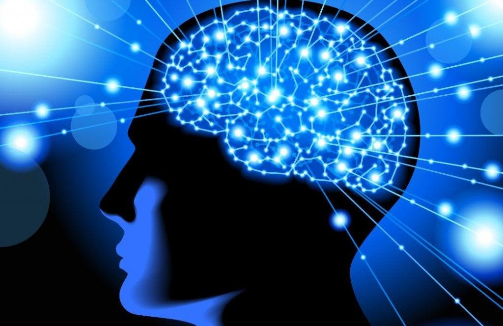 Video som kommer förändra hur du förstår din hjärna