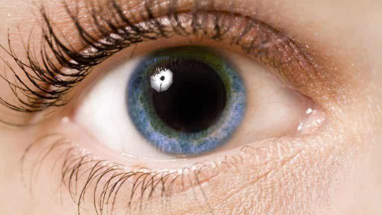 Vet du vad våra pupiller avslöjar?