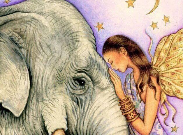 Kvinna och elefant