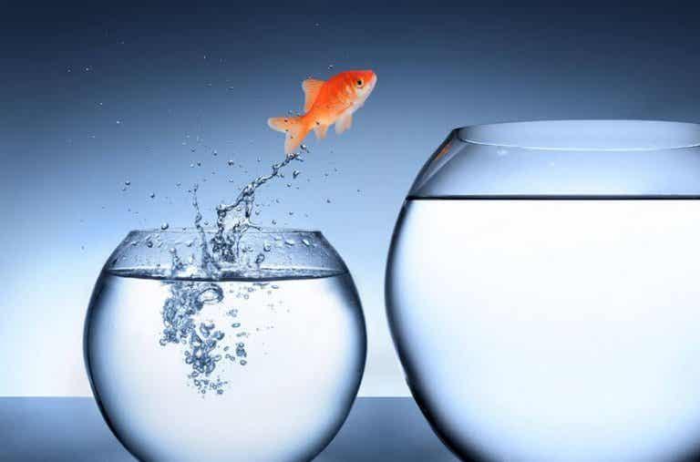 Hinder är möjligheter för tillväxt