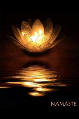 Lotus - Namaste