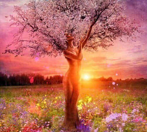 Kvinnligt träd