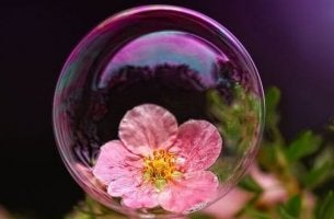 Överbeskyddande bubbla