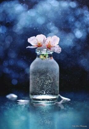 Blommor i burk