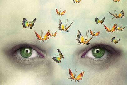 Ögon och fjärilar