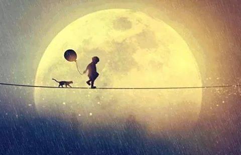 Pojke, katt och månen