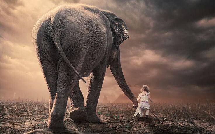 Flicka och elefant