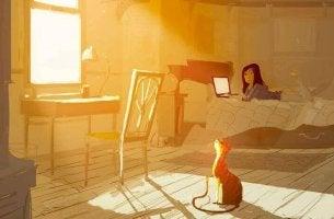 Rum med solsken