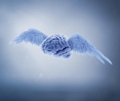 Flygande hjärna