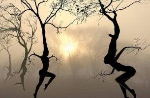 Människoträd
