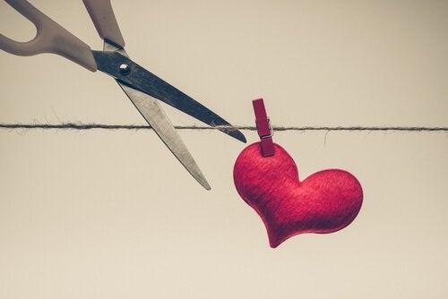 Hjärta på tork