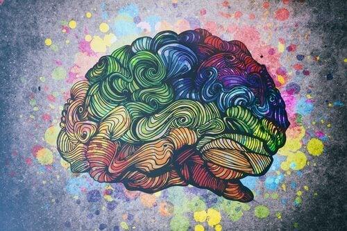 Upptäck 8 typer av intelligens
