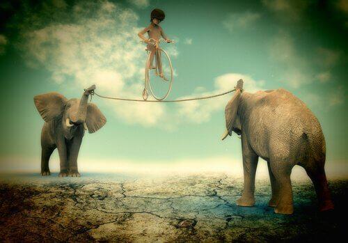 Balansakt med elefanter