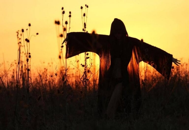 Fågelskrämma i solnedgång