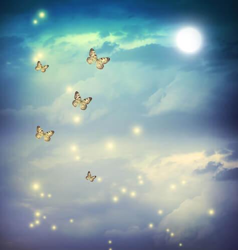Fjärilar i skyn