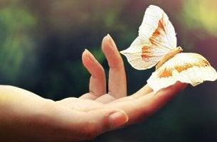 Hand håller fjäril