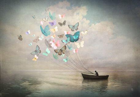 Fjärilar drar båt