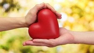 Händer håller hjärta