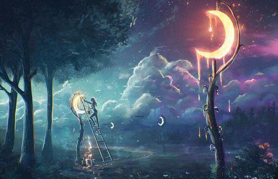 Månar i skogen