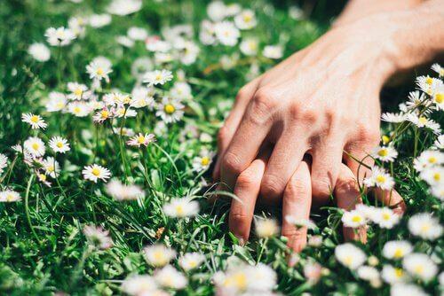 Händer i gräset