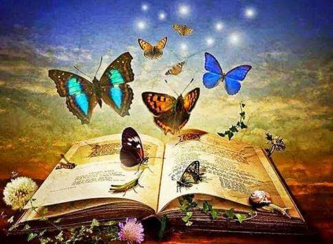 Fjärilar över bok