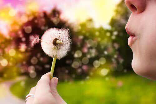 Att projicera för att förverkliga dina drömmar