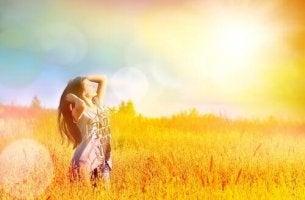 Fält i solljus