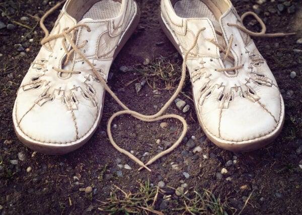 Hjärta av skosnören