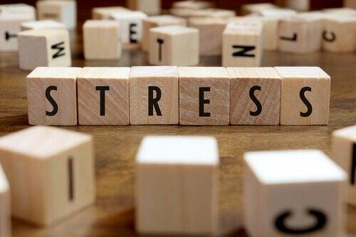Hur stressen påverkar vår hälsa