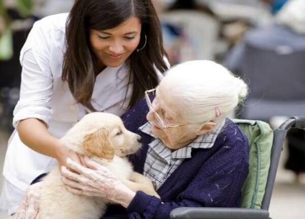 Äldre med hundvalp