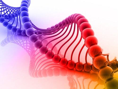 Färgglad DNA-kedja