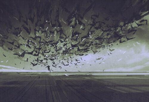 Flyr från fåglar