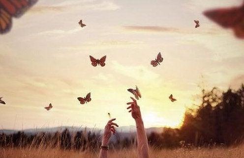 Händer och fjärilar