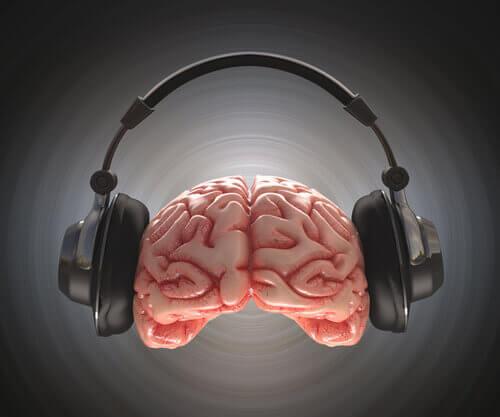 Hörlurar på hjärna