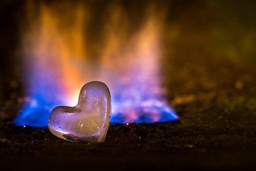 Om elden brunnit ut, sök efter en ny flamma