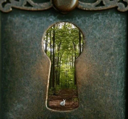 Skog genom nyckelhål