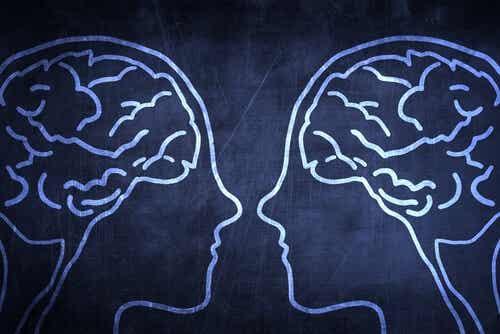 Att förstå spegelneuroner