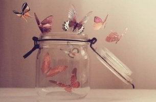 Fjärilar i burk