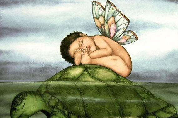 Bebis på sköldpadda