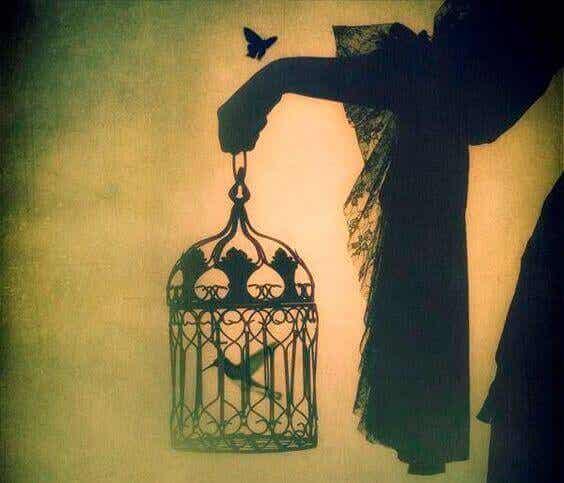 En fågel som är född i en bur kommer att tro att det är en sjukdom att flyga