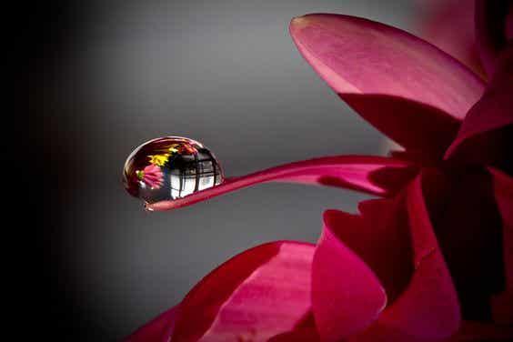 """Känslomässig gråt: medicinen för att """"tömma"""" själen"""