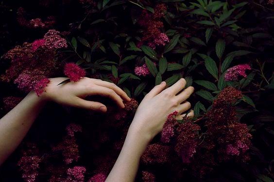 Händer på blommor