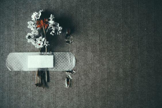 Plåster på blommor