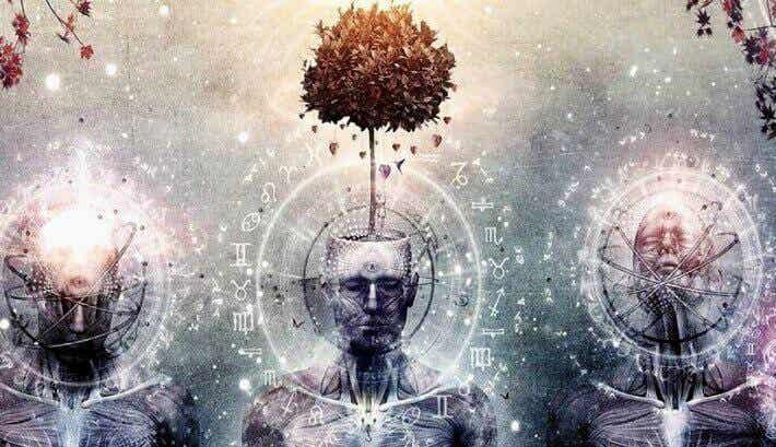 Tallkottkörteln: Sinnets enigma
