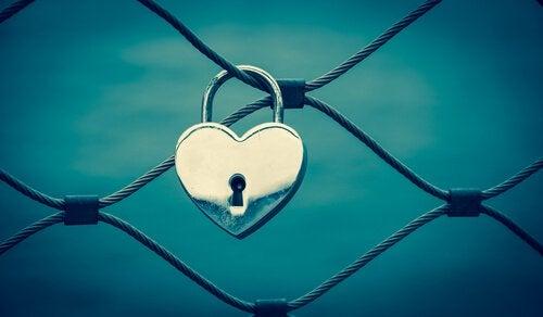 Hjärtelås på stängsel
