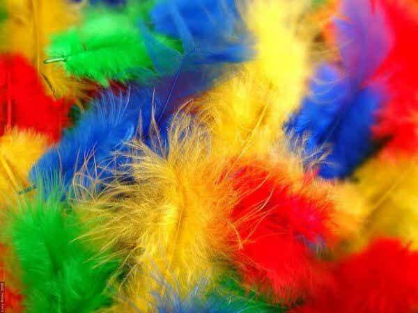 Synestesi: se ljud, hör färger och känn smaken av föremål
