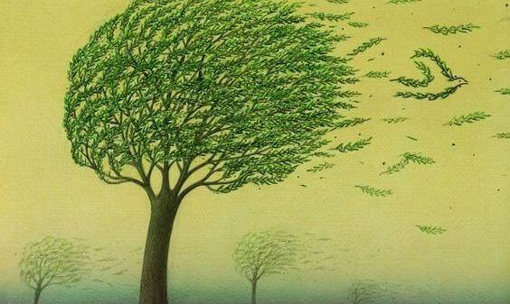 Träd i vinden