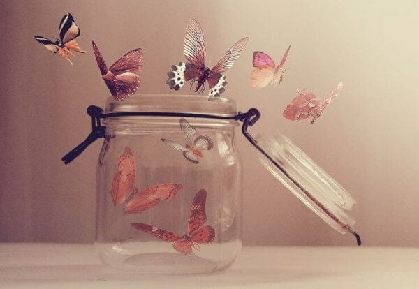 Burk med fjärilar
