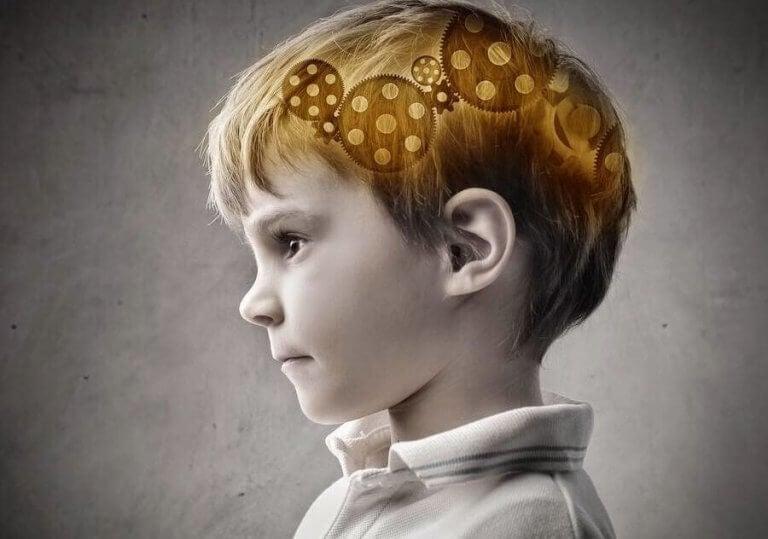 Ett barns hjärna