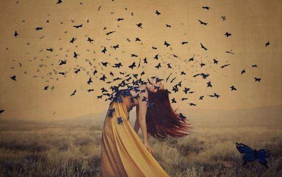 Fjärilar från kvinna